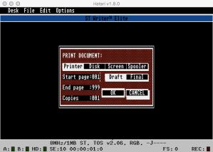 STWriter Print Gem