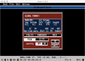 STWriter Global Format