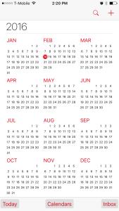 SynChron iOS Calendar